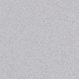 Raw Concrete Gray